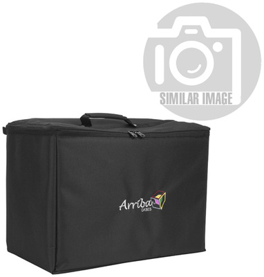 Accu-Case ATP-19 Padded Bag